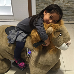 Shoppers Take Plush Pets for a Mall Ride