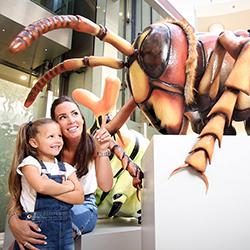 Giant Bugs Invade intu Braehead