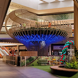 Mall Escape: Treehouse Unveiled at FVM