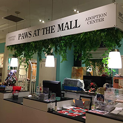 Paws at the Mall